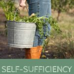 Self-Sufficiency: Reality or Utopia?