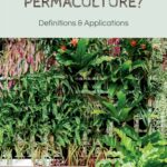 What is Permaculture? Definitions & Applications