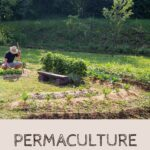 Permaculture: Using Patterns that Occur Naturally to Grow Food